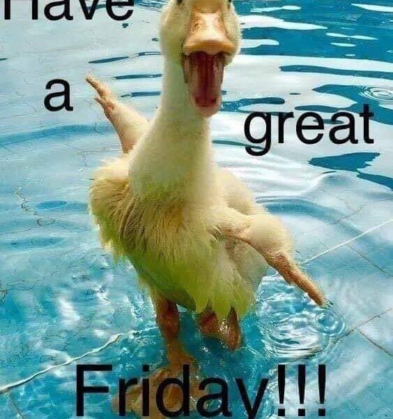 Have a great Friday and a great weekend folks!