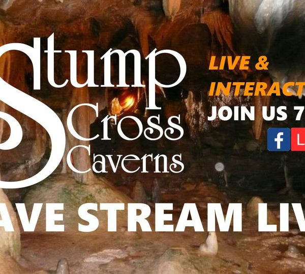 Join Lisa and Nick Live & Interactive from 7pm this