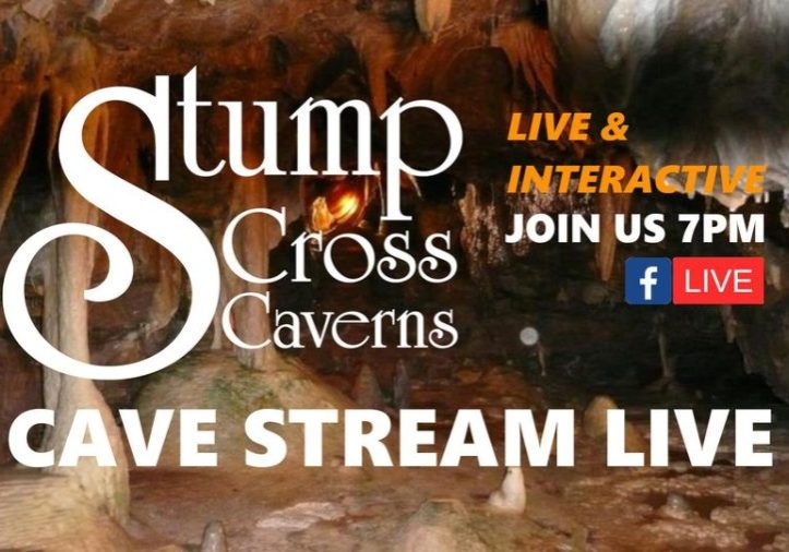 Join us again tonight at 7pm for our nightly adventures