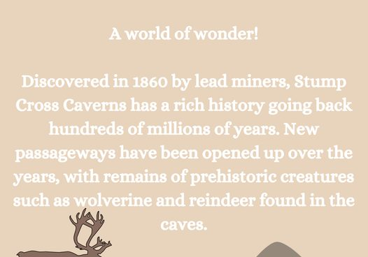 The caves have such an amazing history!