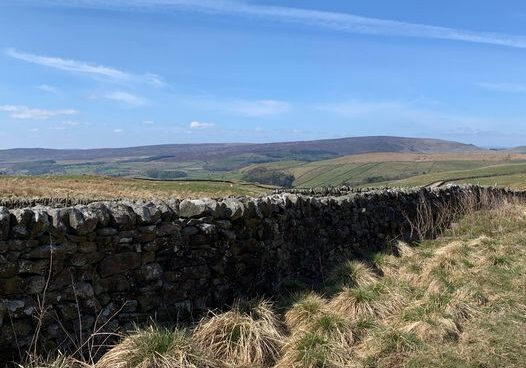 We are so lucky to have the beautiful Yorkshire Dales
